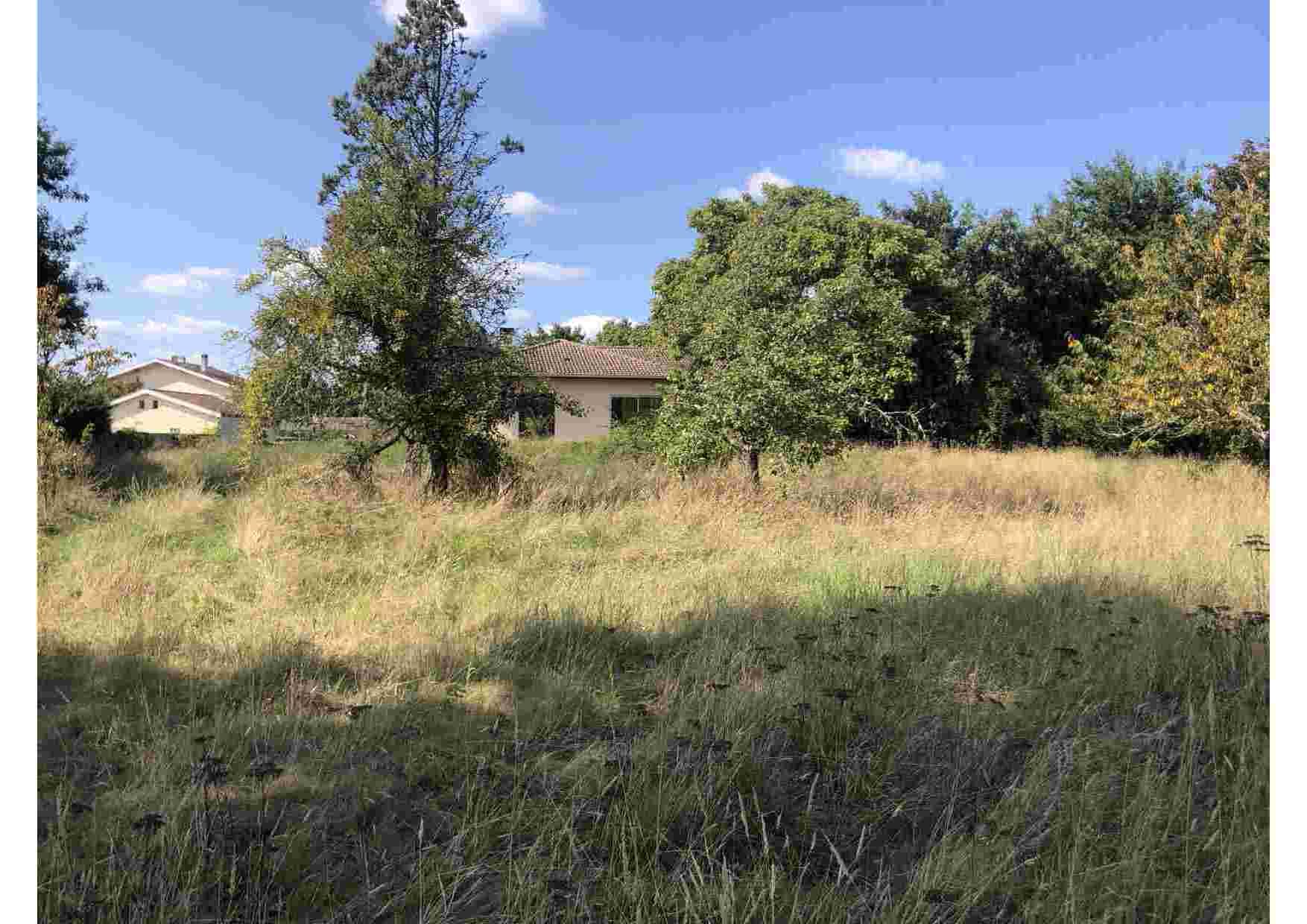 terrain saint-médard-en-jalless